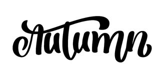 Autumn Calligraphic Lettering Citações escritas mão da rotulação, gráficos da forma, cópia da arte para cartazes e cartões ilustração stock