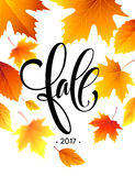 Autumn calligraphy. Background of Fall leaves. Concept leaflet, flyer, poster advertising. Vector illustration Stock Photography
