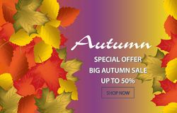 Autumn calligraphy. Seasonal lettering.web banner template.vector illustration. Autumn calligraphy. Seasonal lettering.web banner template.vector illustration stock illustration