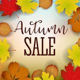 Autumn calligraphy. Seasonal lettering.web banner template.vector illustration Royalty Free Stock Image