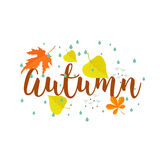 Autumn. Calligraphy text , rain and leaves. Stock Photo