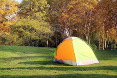 Autumn camp. Yellow camp in a park in autumn in a sunny day Royalty Free Stock Photography