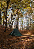 Autumn Camping Royalty Free Stock Images