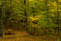 Autumn campsite, potawatomi state park Royalty Free Stock Images