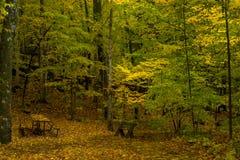 Autumn campsite, potawatomi state park Royalty Free Stock Images
