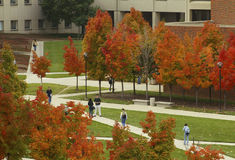 Autumn on Campus Stock Photo