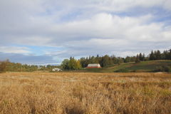 Autumn Canadian Grassland Photo stock