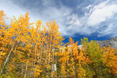 Autumn in the Canadian Rockies Stock Photos