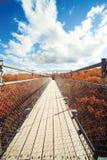 Autumn in Canda Stock Image