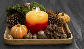 Autumn candle decoration with cones,moss,cinnamon, acorns,anise Royalty Free Stock Photos
