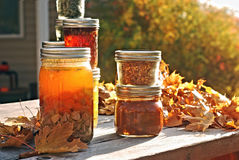 Autumn Canning Stock Photography