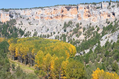 Autumn in the canyon of the river wolves Royalty Free Stock Image