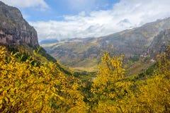Autumn Canyon Stock Photography