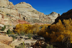 Autumn in Capitol Reef, Utah. Autumn in Capitol Reef National Park Royalty Free Stock Image