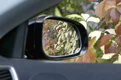 Autumn In A Car Window Royalty Free Stock Photo