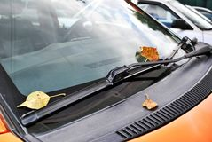 Autumn and the car. Yellow leaves of the trees on the windshield of the car stock image