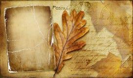 Autumn card Stock Photo