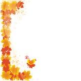 Autumn_card Royalty Free Stock Photo