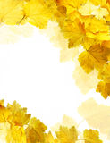 Autumn card Royalty Free Stock Photo