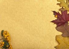 Autumn Card Fotografia Stock