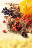 Autumn card with berries Royalty Free Stock Images