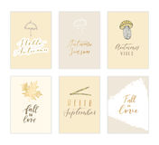 Autumn card collection. Stock Photography