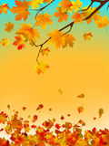 Autumn card of colored leafs with copy spac. EPS 8 Stock Image