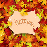 Autumn card, colorful leaves frame, background, template Royalty Free Stock Photo