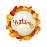 Autumn card, colorful leaves and handwritten lettering, background, template, illustration Stock Photography