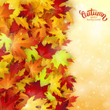Autumn card, colorful leaves and handwritten lettering, background, template, illustration Royalty Free Stock Photo