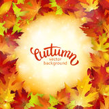 Autumn card, colorful leaves and handwritten lettering, background, template, illustration Royalty Free Stock Images