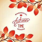 Autumn card design Royalty Free Stock Photos