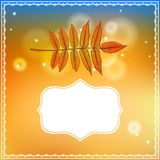 Autumn card with falling leaf and bokeh lights. Vector illustration of a leaf and ornamental frame on abstract gold bokeh background. Modern drawing for autumn Stock Photos