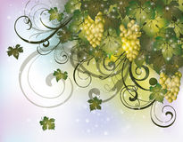 Autumn card with grapes Royalty Free Stock Photos