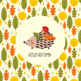 Autumn card with hedgehog. Royalty Free Stock Images