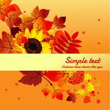 Autumn card with horizontally space for text Stock Photos