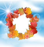 Autumn card with leaves maple on blue sky Royalty Free Stock Photo