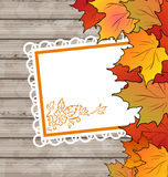 Autumn card with leaves maple, wooden texture Stock Images