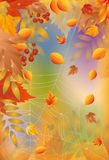 Autumn card with spider web Royalty Free Stock Image
