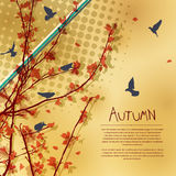 Autumn card tree. Autumn tree composition with room for text Royalty Free Stock Image