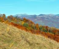 Autumn Carpathian berg, Ukraina Royaltyfri Fotografi