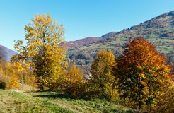 Autumn Carpathian-Berge, Ukraine Stockfotos