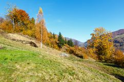 Autumn Carpathian-Berge, Ukraine Stockfoto