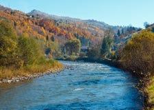 Autumn Carpathian bergflod Ukraina Arkivfoton