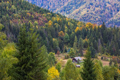 Autumn Carpathian-landschap Stock Afbeeldingen