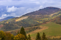 Autumn Carpathian-landschap Stock Foto's