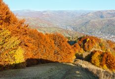 Autumn Carpathian mountain, Rakhiv, Ukraine. Autumn Carpathian Mountains landscape with multicolored yellow-orange-red-brown trees on slope and  Rakhiv town in Stock Photography