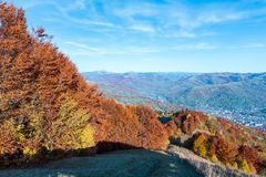 Autumn Carpathian mountain, Rakhiv, Ukraine. Autumn Carpathian Mountains landscape with multicolored yellow-orange-red-brown trees on slope and  Rakhiv town in Royalty Free Stock Photo
