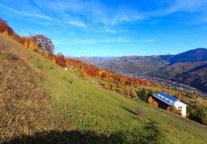 Autumn Carpathian mountain, Rakhiv, Ukraine. Autumn Carpathian Mountains landscape with multicolored yellow-orange-red-brown trees on slope and  Rakhiv town and Stock Images