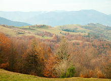 Autumn in Carpathian Mountains Royalty Free Stock Images